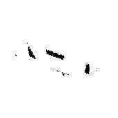 Wkład do pojemnika BRENDON 35,5x26,5x9,6cm tworzywo czarny